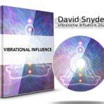 David Snyder - Vibrational Influence 2020